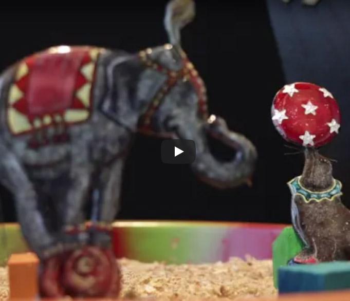 Punt de Partida – VIDEO